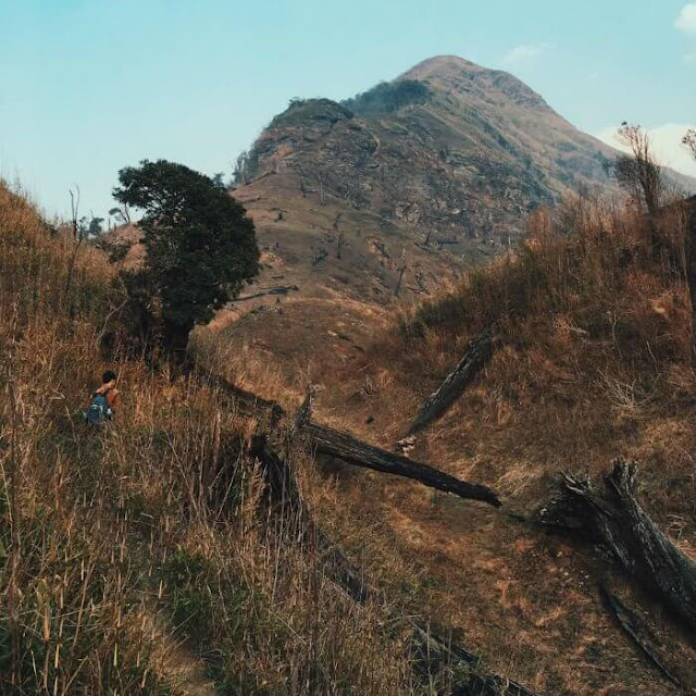 Đường khá dốc nhưng không quá khó, chỉ cần du khách có sức khỏe ổn định và tinh thần tốt là leo thoải mái, hòa mình trong vẻ đẹp của những khu rừng thưa, bãi cây bụi, đồi cỏ dại. Trên ngọn núi này không có rừng rậm mà toàn là cây bụi nhỏ, trải rộng như một thảo nguyên bát ngát.