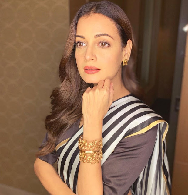Dia Mirza (Actress) Wiki, Age, Height, Boyfriend, Family and More