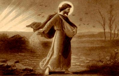 Resultado de imagem para Marcos 4,26-34