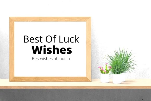 best of luck for exams, future, and career wishes