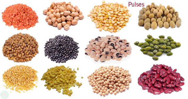 pulses; pulses names; Legume; pulses name in English; list of pulses; ডাল; কলাই; pulse meaning; pulse meaning in English