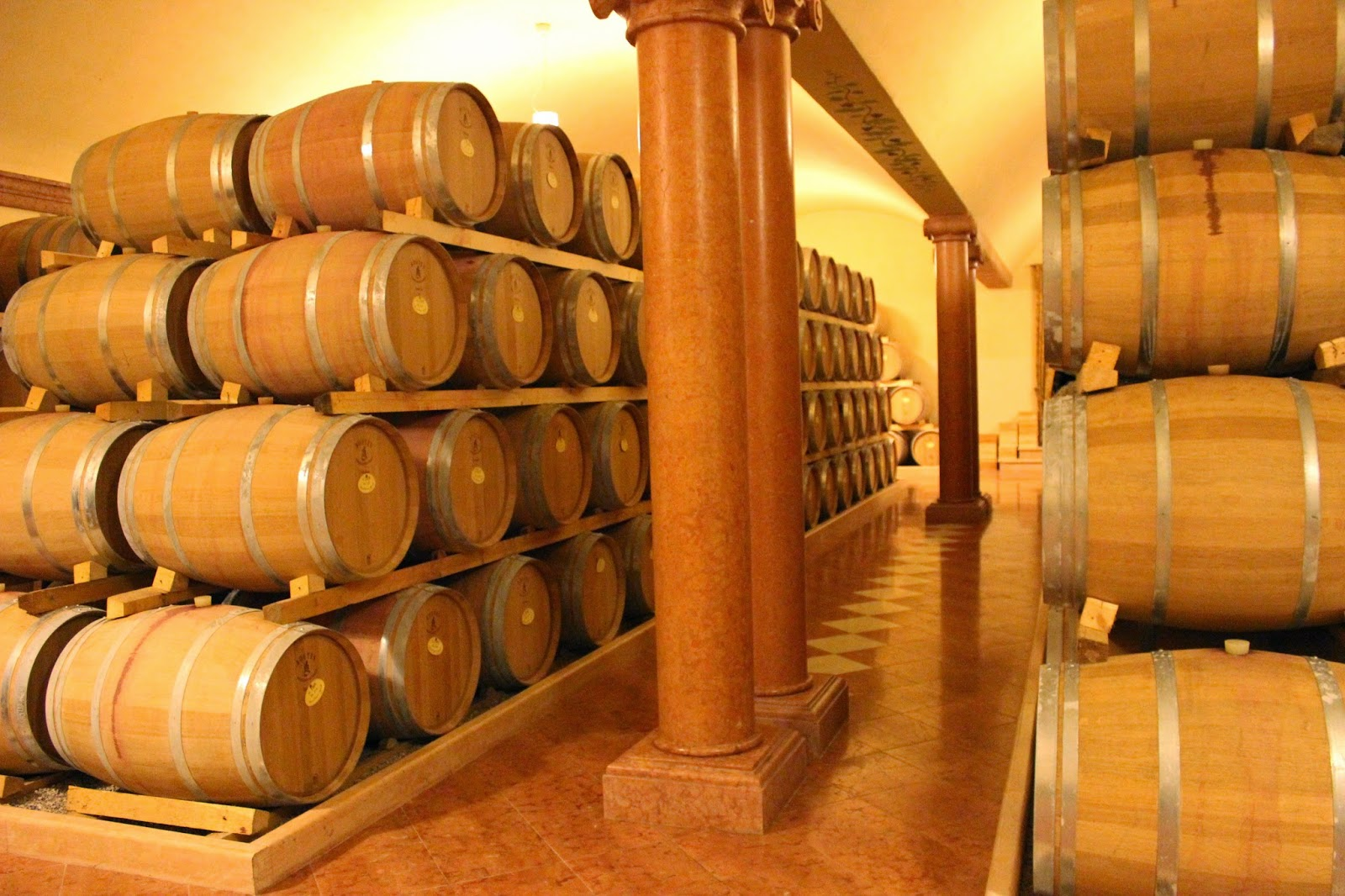 Wine cellar of Monte Zovo in Valpolicella