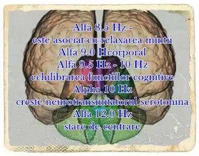 undele alfa si starile creierului