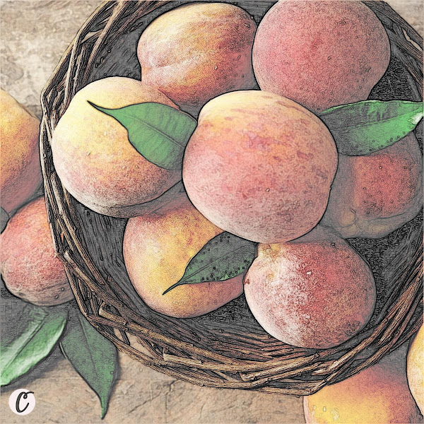 Peaches 🍑