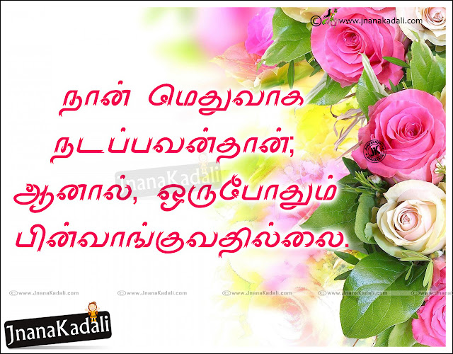 tamil quotes, nice words on life in telugu, daily life changing quotes in tamil, best words on life in tamil