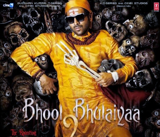 Bhool Bhulaiyaa 2 Movies (2020) Cast & Receive And Movie Download Now