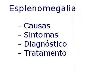 Esplenomegalia causas sintomas diagnóstico tratamento prevenção riscos complicações