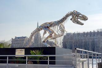 Paris :  Tyrannosaurus Rex, de Philippe Pasqua - Embarcadère de la Compagnie des Bateaux-Mouches - Port de la Conférence - VIIIème