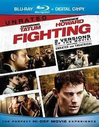 Download Fighting (2009) Dual Audio 300mb BDRip 480p