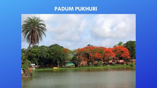 Padum Pukhuri -A Beautiful lake to visit in Tezpur