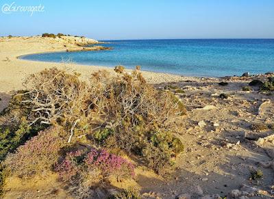 diakoftis spiaggia karpathos