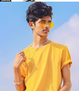 Ayush Jain (Tik Tok Star), Wiki, Age, Girlfriend, Family, Weight, Height, Bioghraphy, Net Worth. - Ayush%2BJain%2Bagr