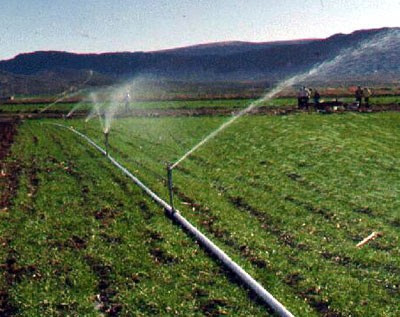Idaho Farm Bureau 174 News June 2011