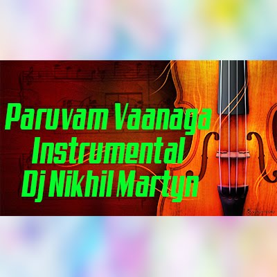 Paruvam Vaanaga Instrumental | Dj Nikhil Martyn