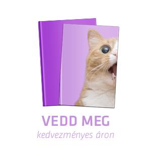 http://www.libri-kiado.hu/konyveink/konyv/686/A_hires_hatodik_Ghork