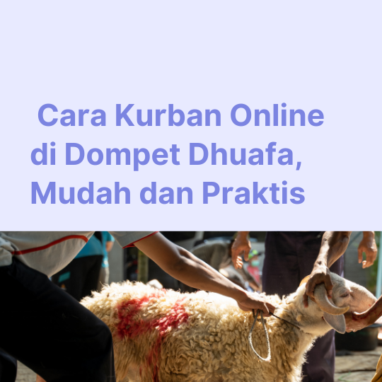Cara Kurban Online di Dompet Dhuafa, Mudah dan Praktis