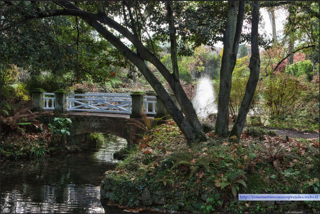 Asturias naturaleza jard n bot nico de gij n for Jardin urbano gijon
