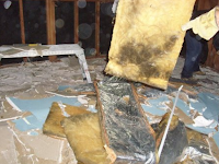 How to Kill Mold on Drywall, Carpet, and Wood