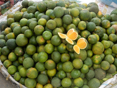 Gambar jeruk kalamansi