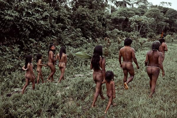 Bộ tộc Huaorani che tờ chim bằng lá cây 1