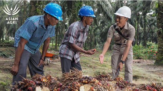 Perusahaan Sukanto Tanoto Bagikan Premi Penjualan Minyak Sawit Kepada Mitra Petani