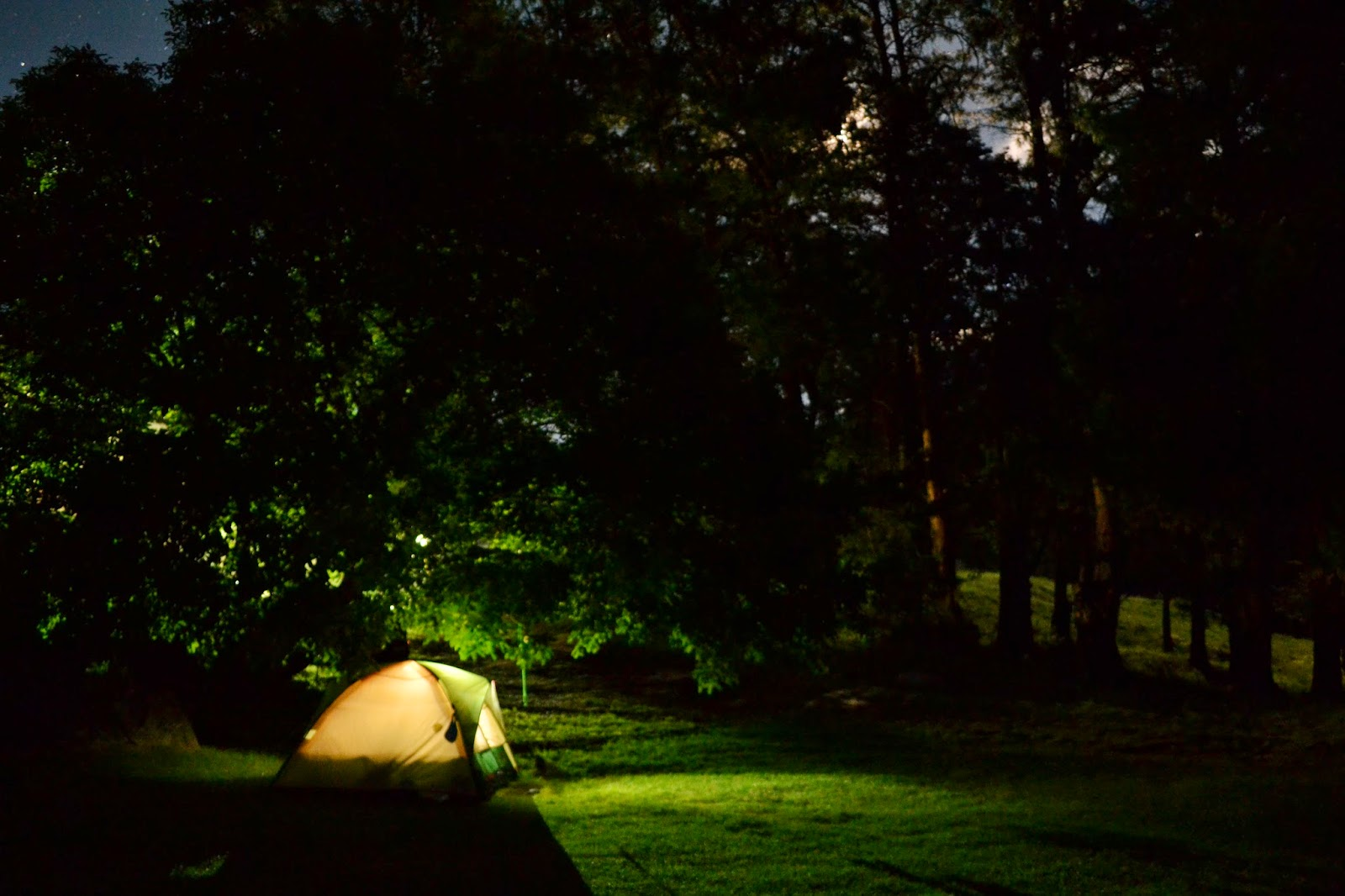 Night time photo of tent and moon behind trees
