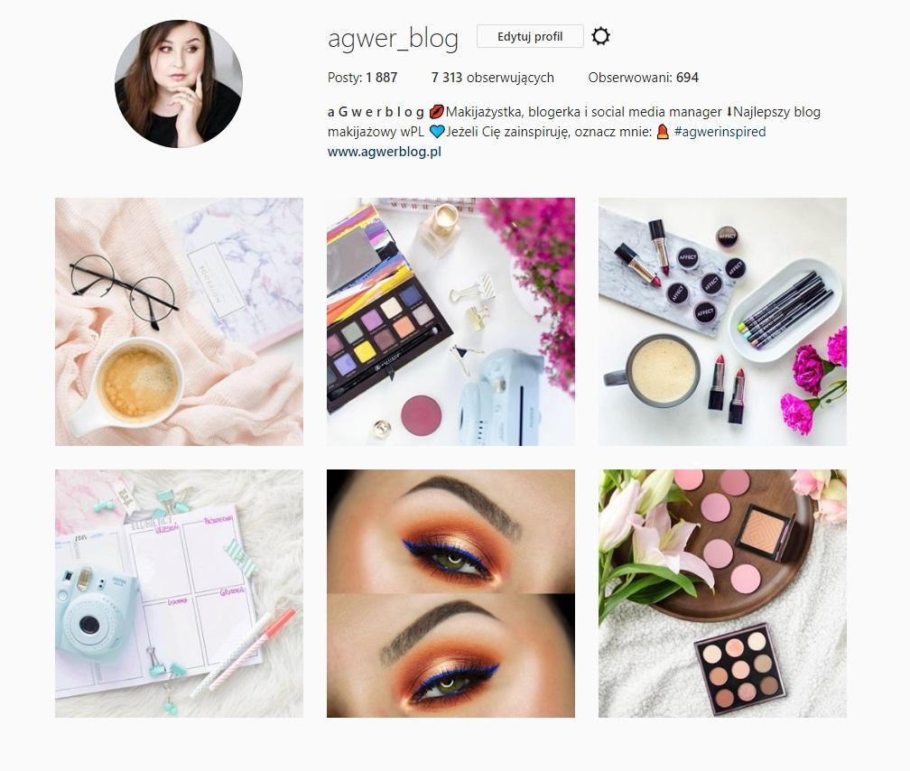 agwerblog-instagram