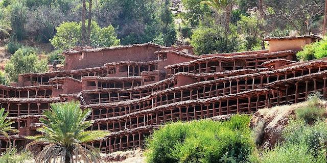 اكبر المناحل التقليدية بالعالم في قرية انزركي جنوب المغرب