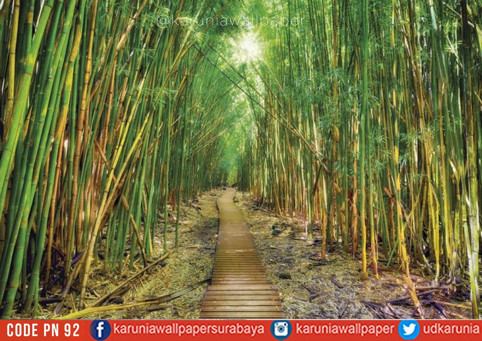 jual dinding wallpaper hutan bambu