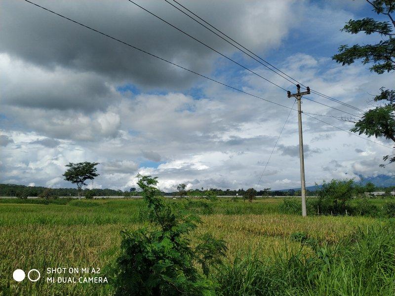 Hasil Foto Kamera Xiaomi Mi A2