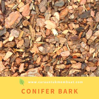 Conifer Bark