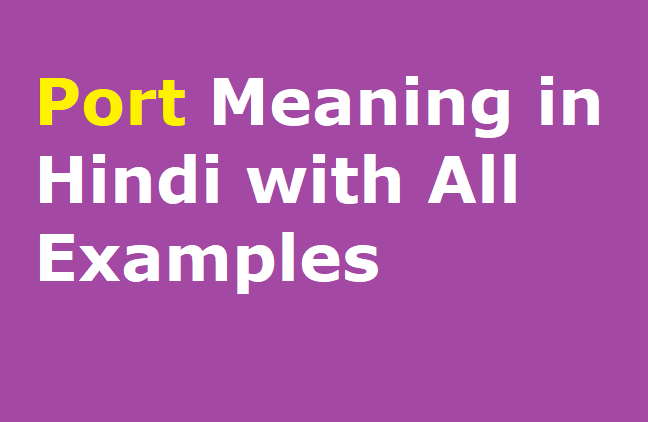 Port Meaning in Hindi with All Examples