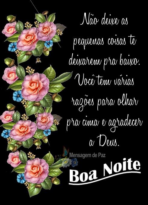 Não deixe as pequenas coisas   te deixarem pra baixo.   Você tem várias razões para   olhar pra cima e agradecer a Deus.  Boa Noite!