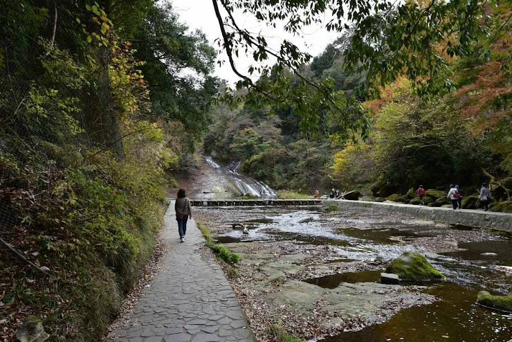 粟又の滝が見える遠景