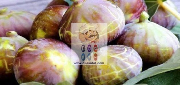 فوائد واستخدامات فاكهة التين الجزأ الأول