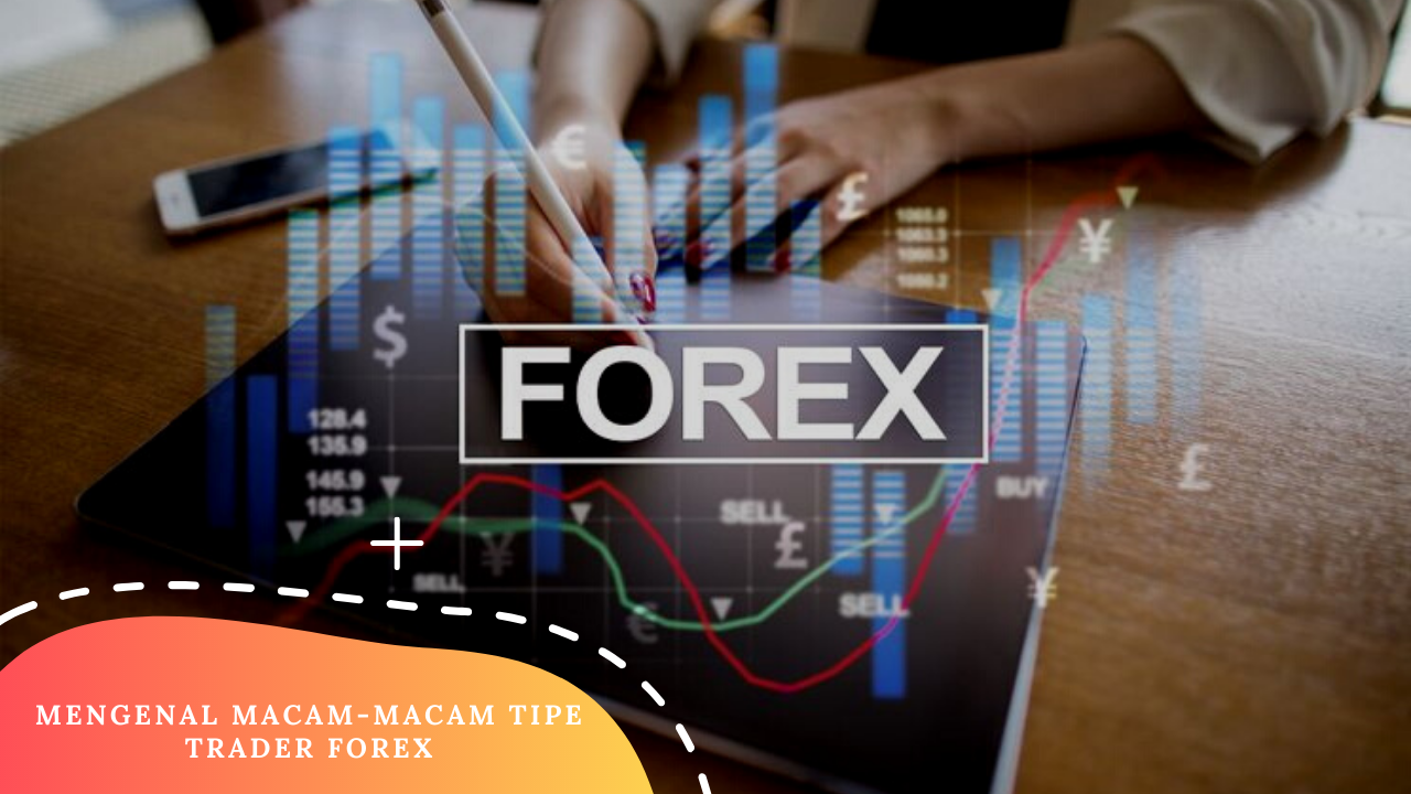 Know the Types of Forex Traders