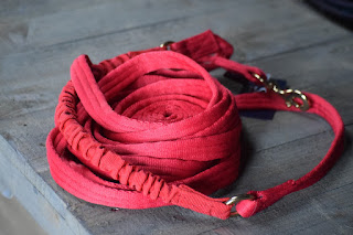 A bright red lunging line for horses wrapped up