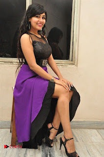 Telugu Actress Rachana Smith Stills at Money is Honey Audio Release  0086.jpg