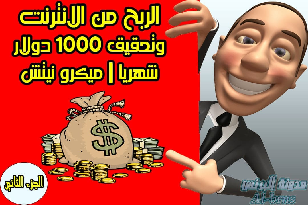 الربح من الانترنت, ميكرو نيتش, جوجل ادسنس, الربح من الانترنت في مصر, الربح من جوجل ادسنس, الربح من الانترنت بدون راس مال, الربح من الانترنت مجانا,
