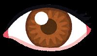 いろいろな色の目のイラスト(茶色)