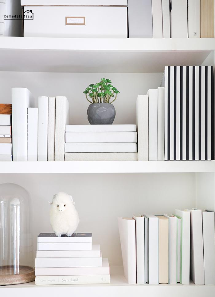 white books on shelves