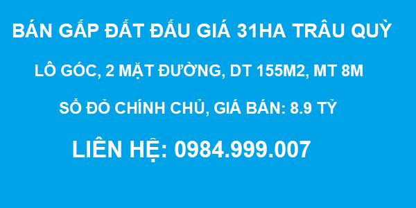 CẦN BÁN GẤP đất đấu giá 31ha TRÂU QUỲ, Gia Lâm, lô góc, DT 155m2, MT 8m