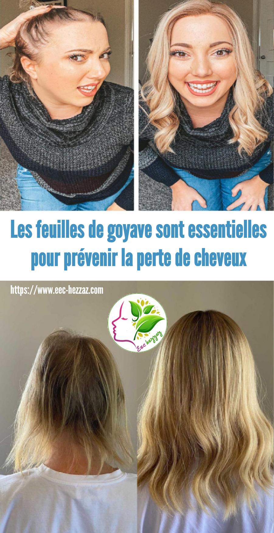 Les feuilles de goyave sont essentielles pour prévenir la perte de cheveux