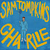 Sam Tompkins - Charlie - Single [iTunes Plus AAC M4A]
