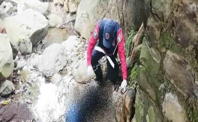 Rocas, agua, riachuelo