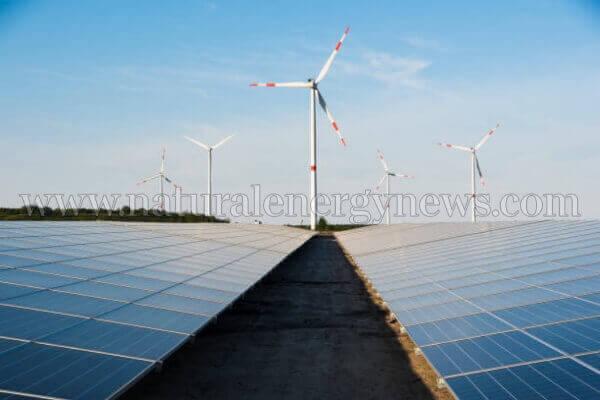 Intense response to wind-solar hybrid tender experts