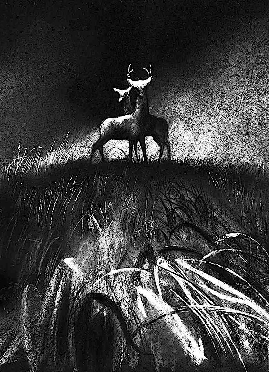 a study for the 1942 animated Disney film Bambi, showing deer concerned about fire