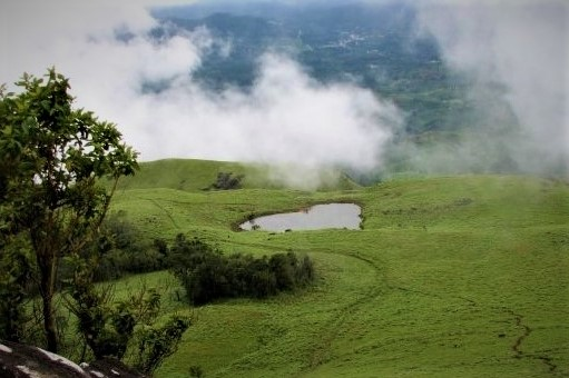 wayanad hill station distance from bangalore  wayanad hill station height  wayanad hill station temperature  lakkidi, wayanad hill stations kerala  hill stations in south india  places to visit in wayanad  wayanad hills name  vythiri hill stations kochi