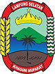 Pengumuman CPNS PEMKAB Lampung Selatan formasi  Pengumuman CPNS Kabupaten Lampung Selatan 2021