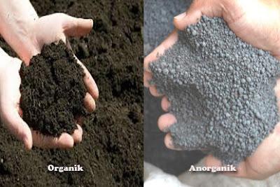 Perbedaan Antara Pupuk Organik (Alami) Dengan Pupuk Anorganik (Kimia)